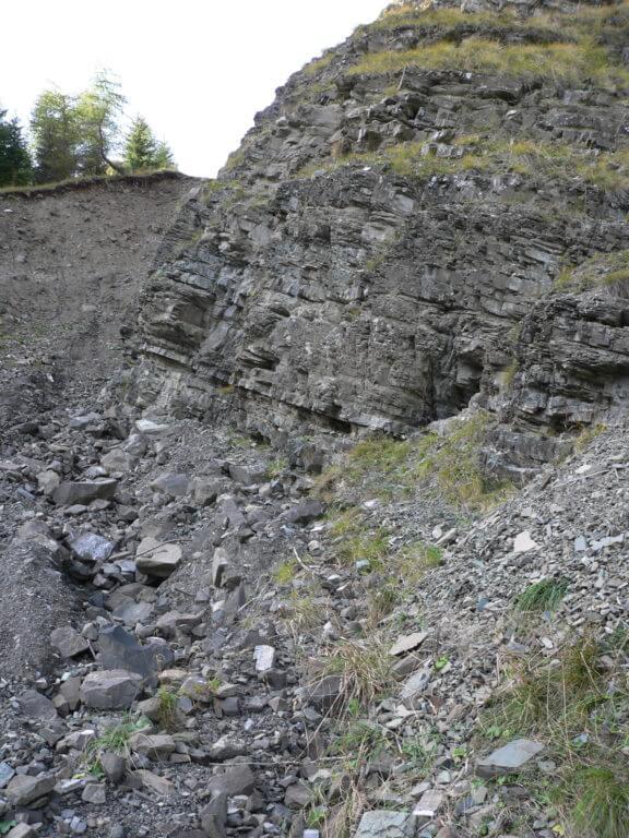 Formazione di Livinallongo in Val Codalonga - Proff. Alberto Bertini