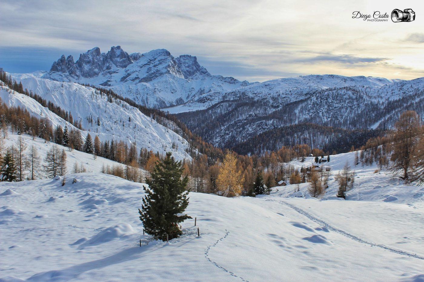 Agordino dove rinascono le Dolomiti