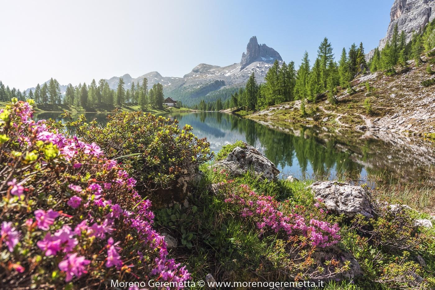 Croda da Lago di Moreno Geremetta