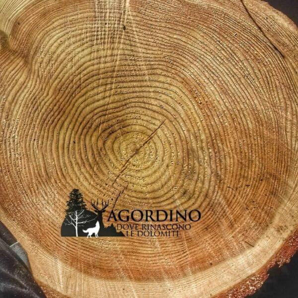 Conaster - difetto del legno