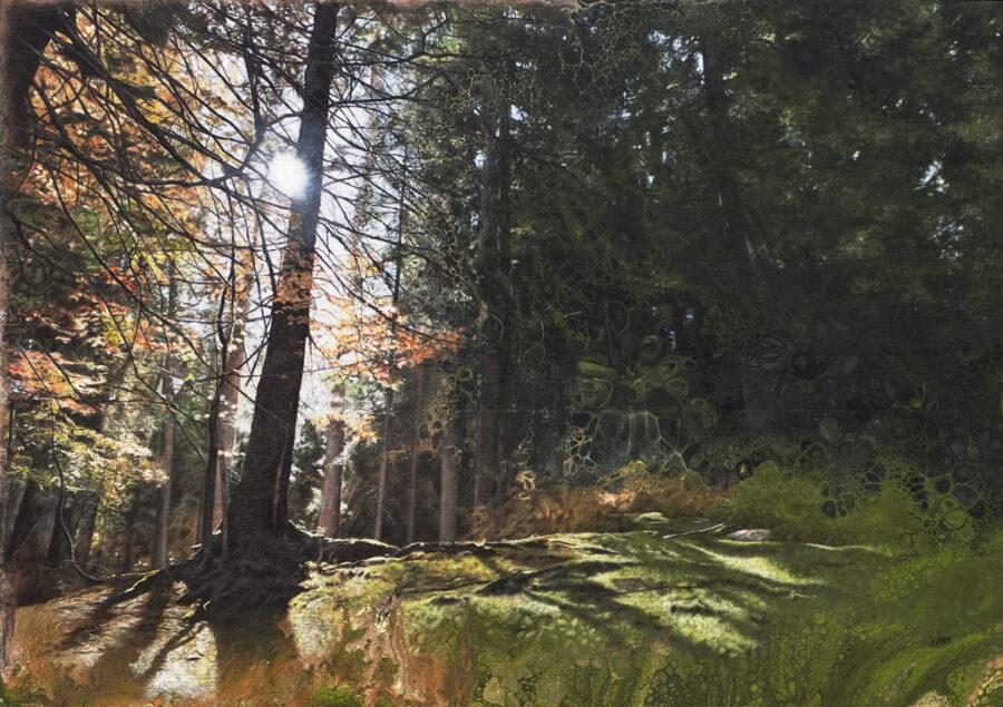 Into the wood 67x95cm acrilico e olio su multistrato - Ottavio Rossi