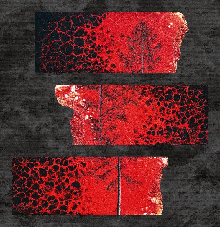 SIAMO ALBERI---SIAMO MEMORIA 25x64cm x 3 pezzi acrilico e olio su Osb 2019 - Ottavio Rossi