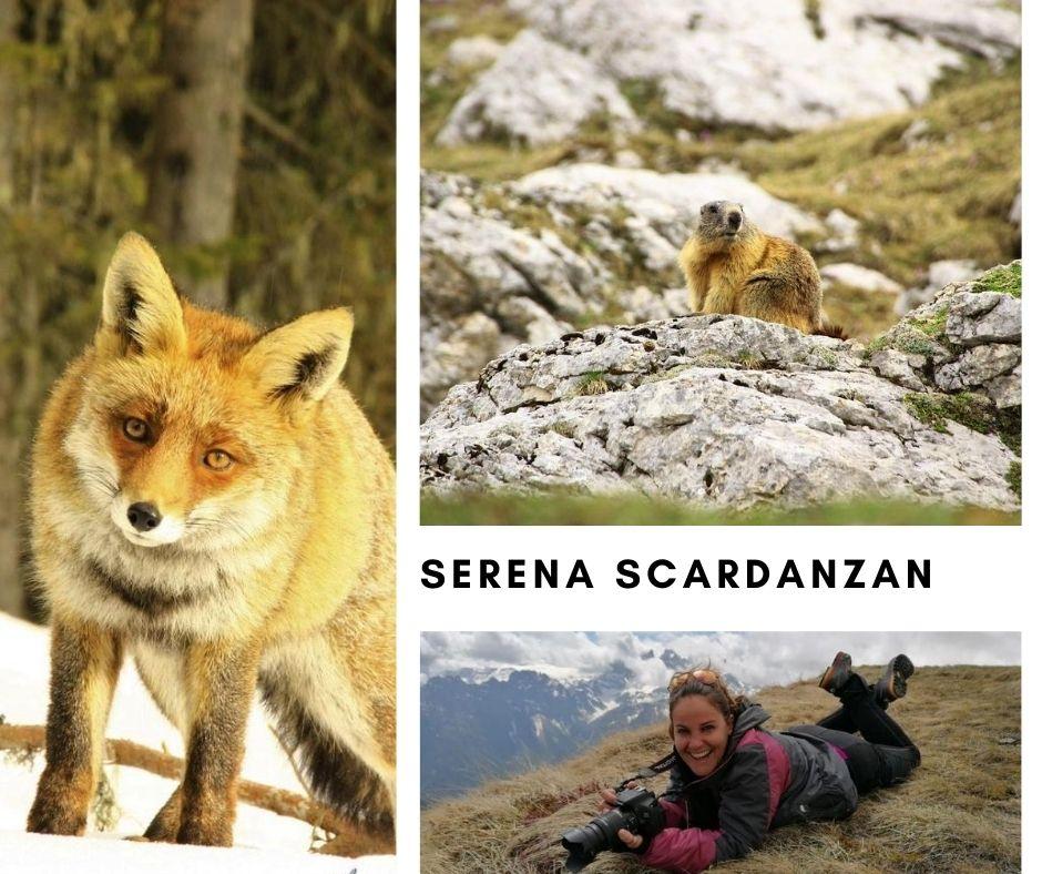 Serena Scardanzan - Fotografa