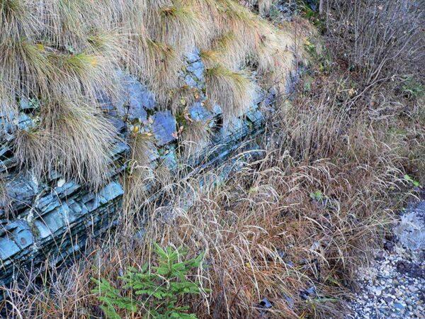 Pietra verde della formazione di Livinallongo