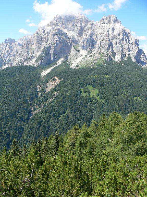 Monte Moiazza - Proff. Bertini