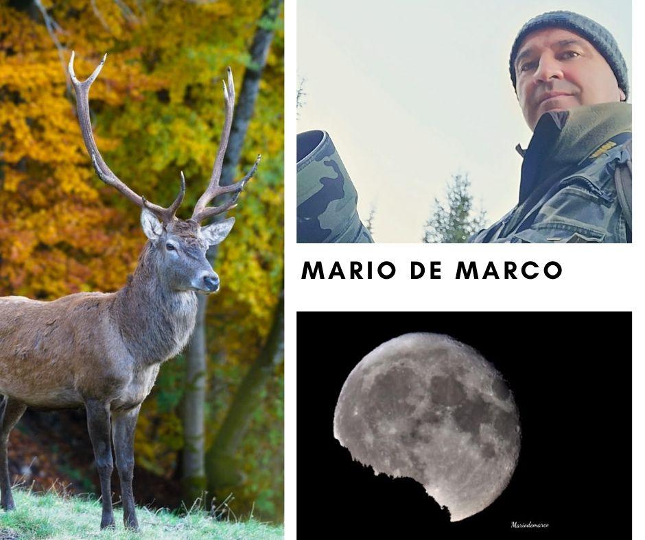 Mario De Marco - Fotografo