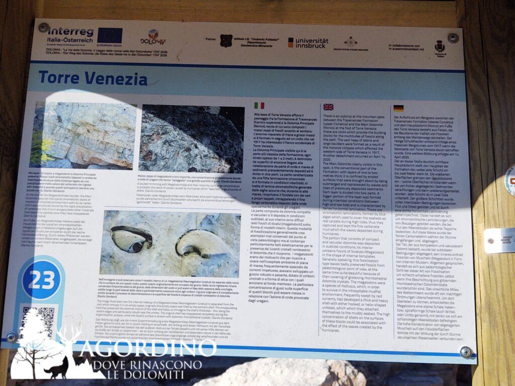 i fossili della torre venzia in val corpassa