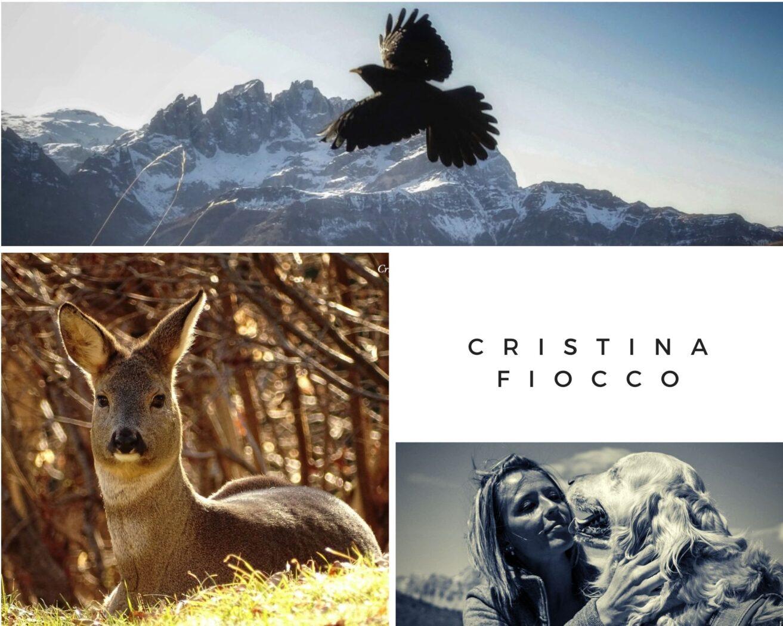 Cristina Fiocco - Fotografa dell' Agordino