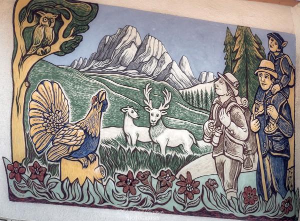 Andar per Boschi di Dunio Piccolin Agordo - Paese del Graffito