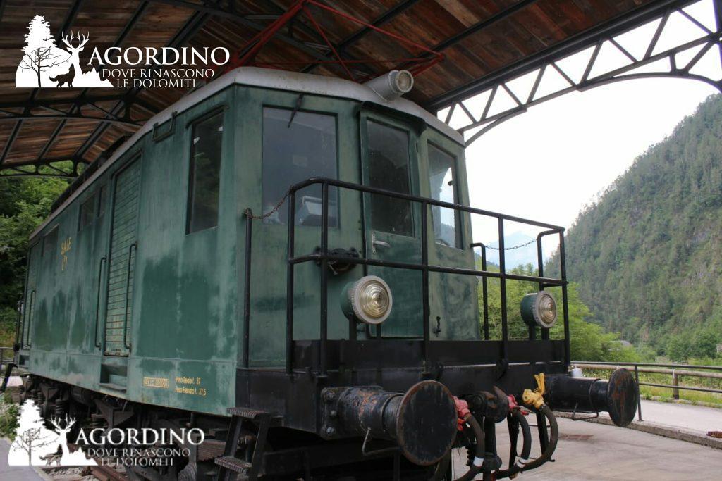 treno agordino