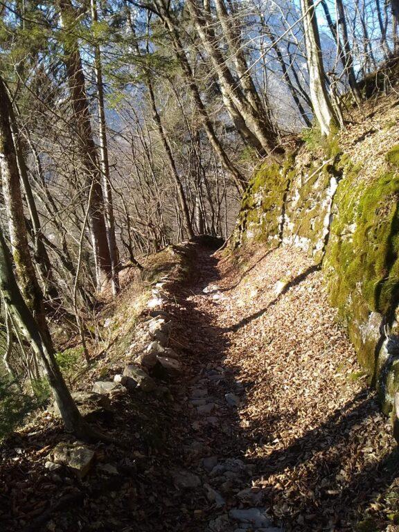 Muri a secco tra le Dolomiti Agordine
