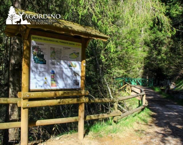 Il sentiero geologico del torrente Gavon - Stop 8 foto di Serena Scardanzan